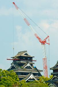 春の熊本城の写真素材 [FYI03059227]
