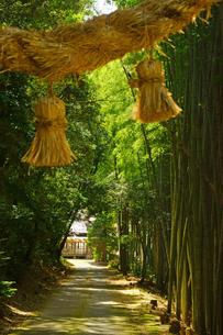 小山諏訪神社の写真素材 [FYI03059262]