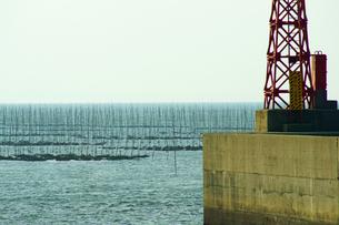 有明海の海苔網の写真素材 [FYI03059288]