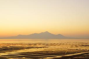有明海の海苔網の写真素材 [FYI03059298]