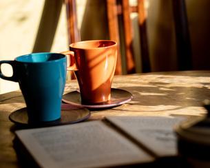 カフェで読書の写真素材 [FYI03059321]