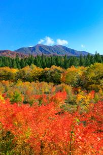 乳頭温泉郷の紅葉と秋田駒ヶ岳の写真素材 [FYI03059607]