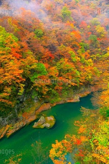 抱返り渓谷の紅葉の写真素材 [FYI03059657]