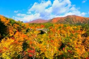 鳴子峡の紅葉の写真素材 [FYI03059660]