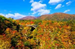 鳴子峡の紅葉の写真素材 [FYI03059664]