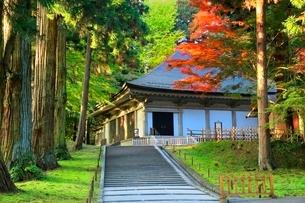 中尊寺金色堂と紅葉の写真素材 [FYI03059693]