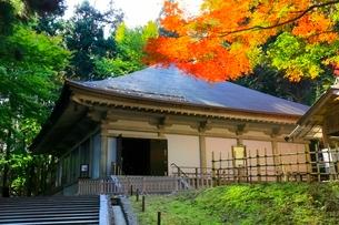 中尊寺金色堂と紅葉の写真素材 [FYI03059696]