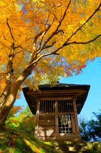 中尊寺鐘楼と紅葉の写真素材 [FYI03059710]