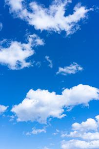 空と雲の写真素材 [FYI03059796]