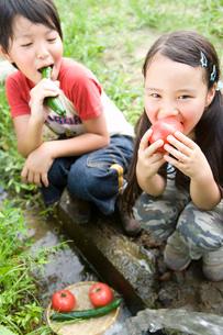 野菜をかじる子供の写真素材 [FYI03059909]