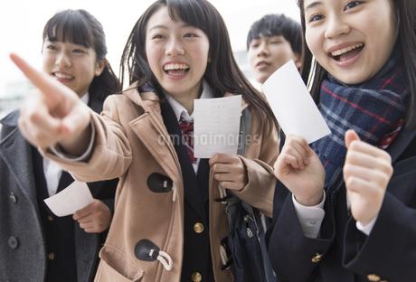 受験番号票を手に番号を確認している女子高校生たちの写真素材 [FYI03060034]