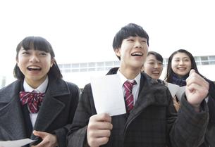 受験番号票を手に番号を確認している高校生たちの写真素材 [FYI03060037]