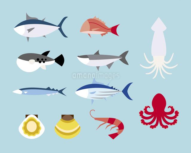 食用の魚のイラスト素材 [FYI03060180]