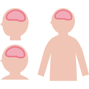 脳内のイメージのイラスト素材 [FYI03060530]