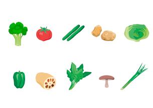 野菜のイラスト素材 [FYI03060977]