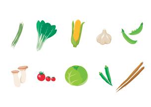 野菜のイラスト素材 [FYI03060979]