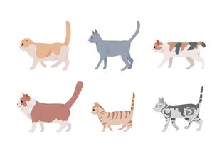猫のイラスト素材 [FYI03060983]