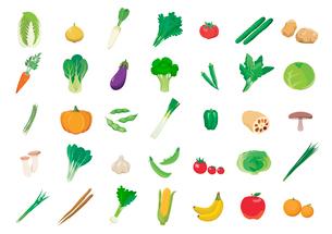 野菜のイラスト素材 [FYI03061022]
