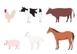 家畜のイラスト素材 [FYI03061028]