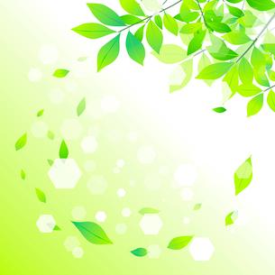 エコロジーイメージのイラスト素材 [FYI03061159]