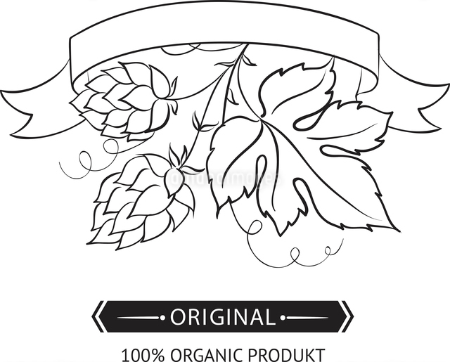 Beer emblems and labels, green over white. Vector illustration.のイラスト素材 [FYI03064483]