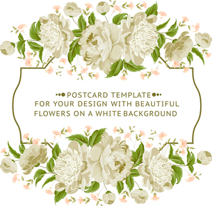 Invitation card with white flowers. Vector illustration.のイラスト素材 [FYI03064604]