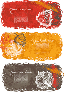 Autumn banners with leafsのイラスト素材 [FYI03065064]