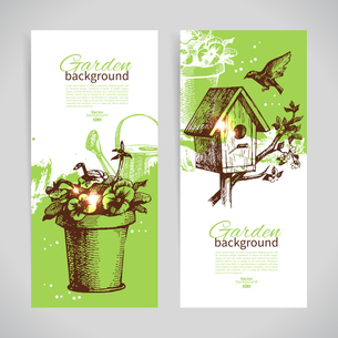 Set of sketch gardening banner templates. Hand drawn vintage illustrationsのイラスト素材 [FYI03065379]