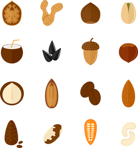 Set of almond hazelnut coconut sunflower seeds and nuts in flat style vector illustrationのイラスト素材 [FYI03066819]
