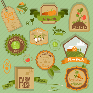 Eco farm fresh organic food vegetables labels and emblems set isolated vector illustrationのイラスト素材 [FYI03067005]