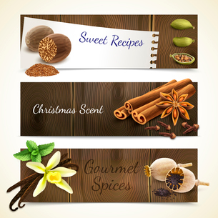 Gourmet spices sweet recipe christmas scent horizontal banners set isolated vector illustrationのイラスト素材 [FYI03067063]