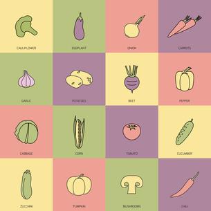 Food vegetables flat line set of cauliflower onion carrot isolated vector illustrationのイラスト素材 [FYI03067174]