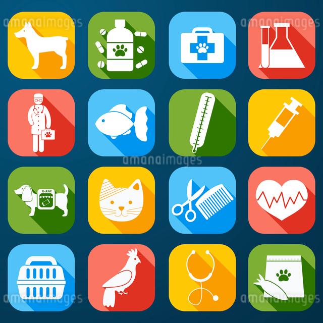 Veterinary pet food and health care  icons set flat isolated vector illustrationのイラスト素材 [FYI03067348]