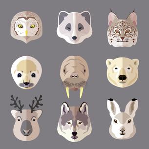 Northern animal and bird portrait flat icons set with owl arctic fox lynx isolated vector illustratiのイラスト素材 [FYI03067507]