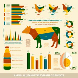 Animal husbandry infographics flat design elements of livestock and chickens vector illustrationのイラスト素材 [FYI03069624]