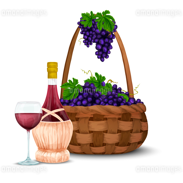 Wine jar glass bottle and grape bunch and basket vector illustrationのイラスト素材 [FYI03069844]