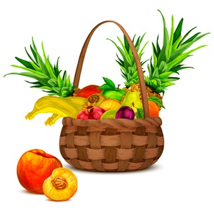 Natural organic tropical and garden fruits set in basket still life vector illustrationのイラスト素材 [FYI03069854]