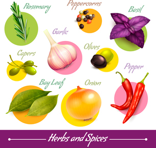 Herbs and spices decorative elements set of peppercorns basil olives isolated vector illustration.のイラスト素材 [FYI03070242]