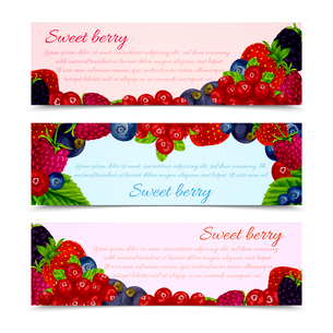 Natural organic forest berries banners horizontal set vector illustrationのイラスト素材 [FYI03070494]