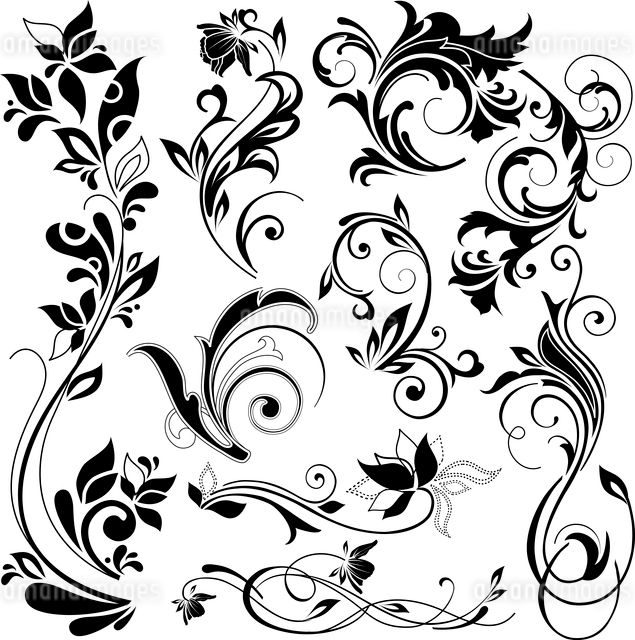 floral design elementsのイラスト素材 [FYI03071155]