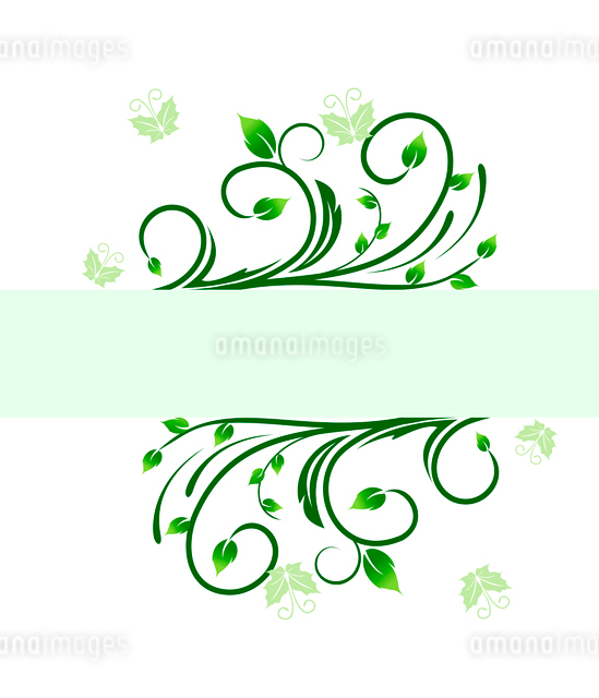 Floral decorative background for holiday card. Vectorのイラスト素材 [FYI03072011]