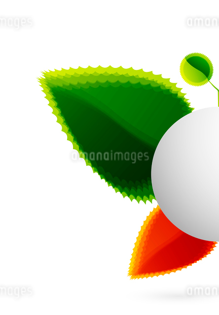 Vector abstract leaf butterfly. Nature conceptのイラスト素材 [FYI03073847]