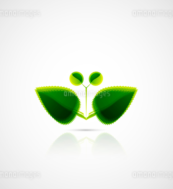 Vector abstract leaf butterfly. Nature conceptのイラスト素材 [FYI03074037]