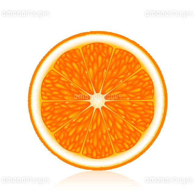 Half an orange on a white backgroundのイラスト素材 [FYI03074705]