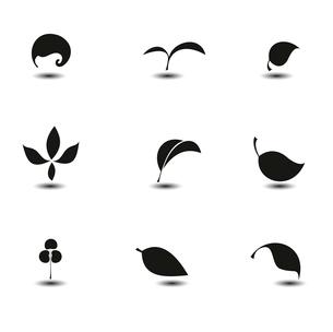 Leavesのイラスト素材 [FYI03078432]