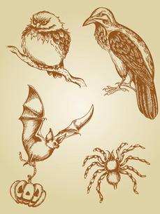 set of vector vintage hand drawn animalsのイラスト素材 [FYI03078664]