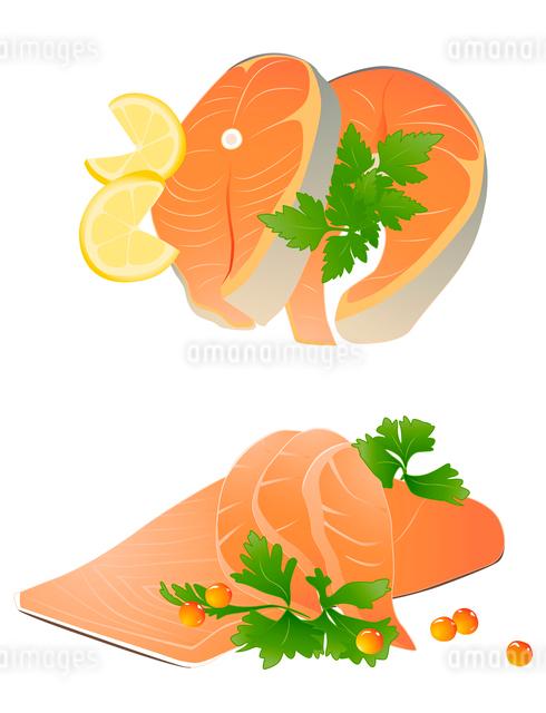 fresh salmon pieces with lemon on white backgroundのイラスト素材 [FYI03078830]