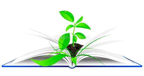 open book with young green plantのイラスト素材 [FYI03078921]