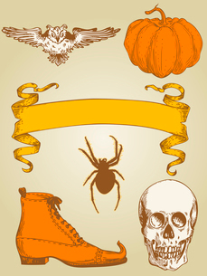 set of vector vintage hand drawn Halloween objectsのイラスト素材 [FYI03078961]