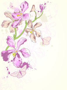 background with hand drawn violet orchidsのイラスト素材 [FYI03079030]
